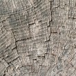 Old wood cut texture - Stockfoto