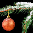 Golden ball on a Christmas tree branch isolated on black — Stock Photo
