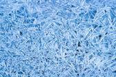 Ice crystals pattern — Stock Photo