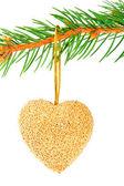 Christmas hjärtat småsak på en tall gren isolerad på vit — Stockfoto