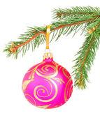 Christmas Ball auf eine Tanne Baum Zweig isoliert auf weiss — Stockfoto