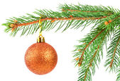 Christmas ball on a fir tree branch — Stock Photo