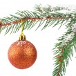 Golden Christmas bauble on a snowy pine tree branch — Stock Photo