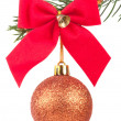 Christmas ball with a bow on a fir tree branch — Stock Photo