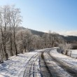 Winter landscape. Road and trees covered with snow — Stock Photo #4629068