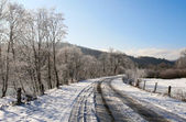 Winter landscape. Road and trees covered with snow — Stock Photo