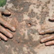 Female belly and hands covered with sea therapeutic mud — Stock Photo