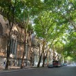 Stock Photo: Shady city street with big trees