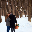Young couple on winter picnic - Stock Photo