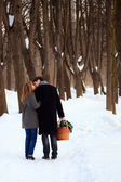 Young couple on winter picnic — Stockfoto