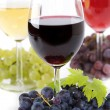 Wine composition — Stock Photo #3956334