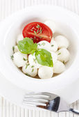 Italian tomato mozzarella close up — Stock Photo