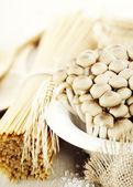 Italian cuisine — Stock Photo