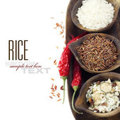 Variety of rice — Stock Photo