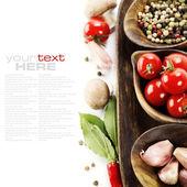Especiarias e ervas frescas — Foto Stock