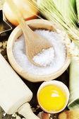 Salt and Fresh ingredients — Stock Photo