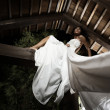 Attractive suntanned girl in white dress poses on a wooden beam. — Stock Photo