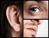 Сlose-up part of the face. Macro Collage. — Stockfoto