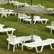 Sunbeds and umbrellas on grass in the hotel area — Stock Photo #5013787