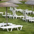 Sunbeds and umbrellas on grass in the hotel area — Stock Photo #5013810