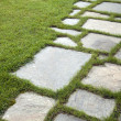 Grass and stone slabs — Stock Photo #5016543