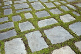 Grass and stone slabs — Stock Photo