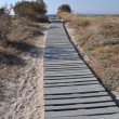 Stock Photo: Beach walkway