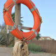 Lifebuoy — Stock Photo #4844593