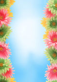 Colorful floral spring border — Foto Stock