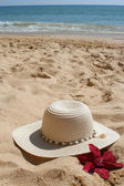 Beach hat — Stock Photo