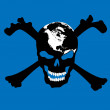 Pirate skull — Stock Photo #4004741