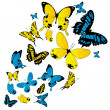 Stock Photo: Butterflies background