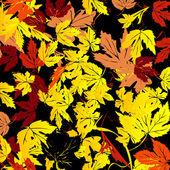 Background for Autumn — Stock Photo