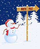 Snow man — Стоковое фото