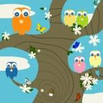 Owls nest — Stock Photo
