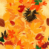 Fall leaves pattern — Stock Photo