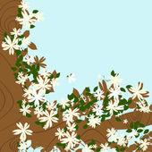 Blossom tree background — Stock Photo