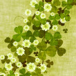 Stock Photo: Grunge clover leaves