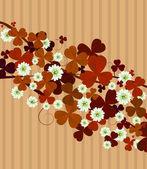 Clover leaf background — Stock Photo
