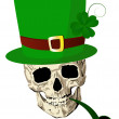 Stock Photo: St.Patrick skull