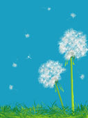 Dandelions and grass — Stock Vector
