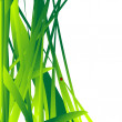 Fresh grass leaves background — Stock Photo