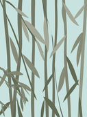 Willow leaves — Stock Photo