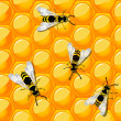 Bees and honeycomb — Stock Photo