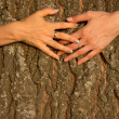 Stock Photo: Hands female love friendship