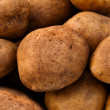 Potato tubers — Stock Photo #4807277