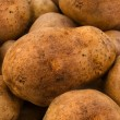 Stock Photo: Potato tubers background fresh