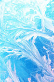 Snowflakes glass morning — Stock Photo
