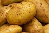 Tubérculos de legumes frescos de batata — Fotografia Stock