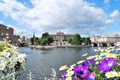 Stockholm v květech — Stock fotografie